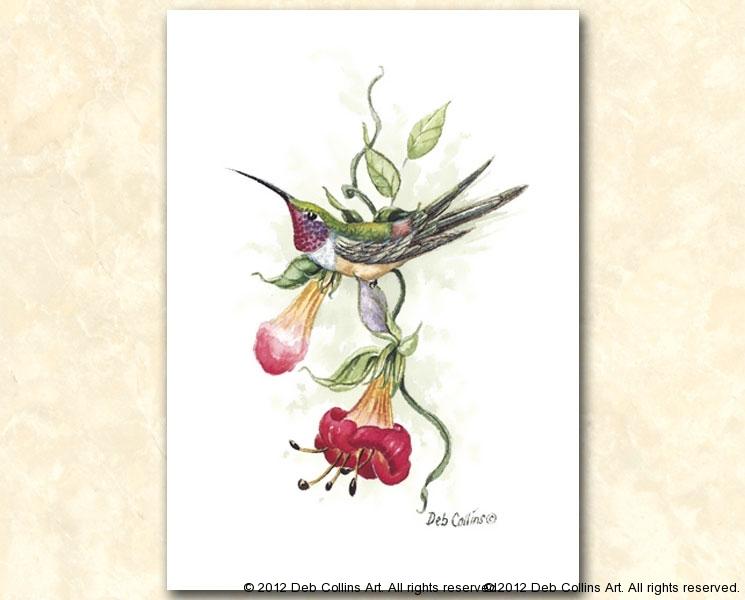 Evening Hummingbird II